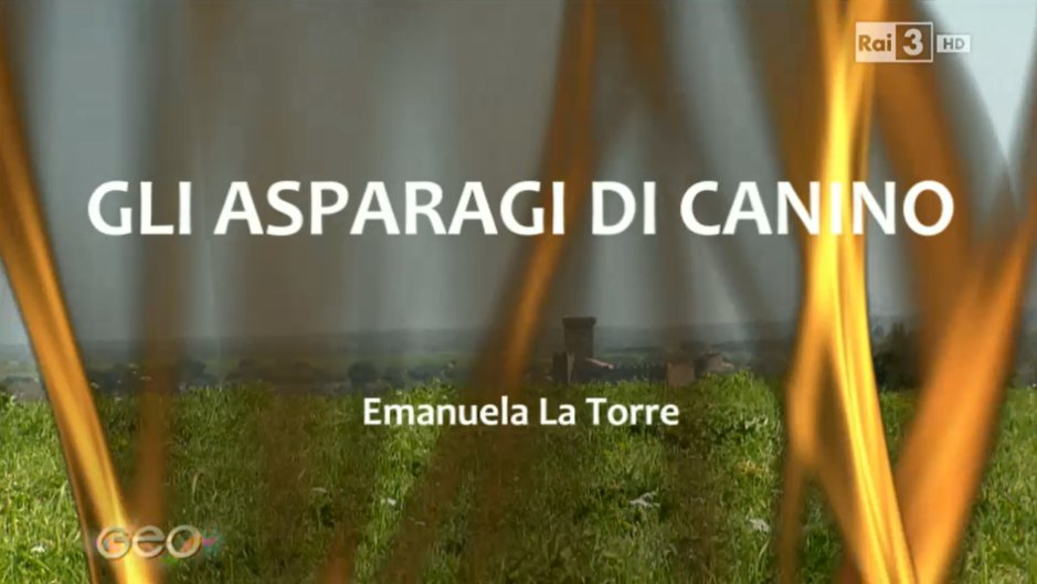 TV's Geo & Geo feature green asparagus in Canino
