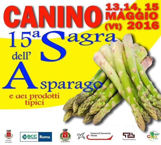 La C.O.P.A. sponsor della Sagra dell'Asparago 2016 a Canino